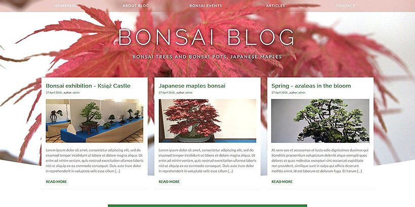bonsaiblog free blog wordpress themes