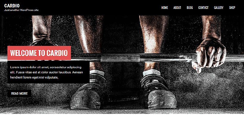 cardio free fitness wordpress themes