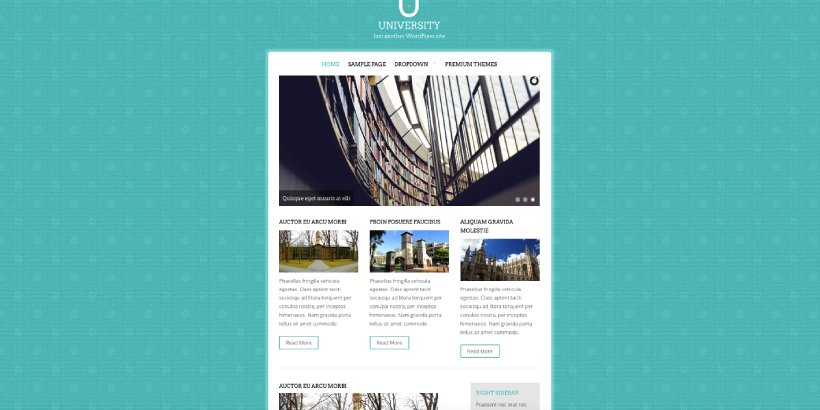 University Free Education WordPress Themes