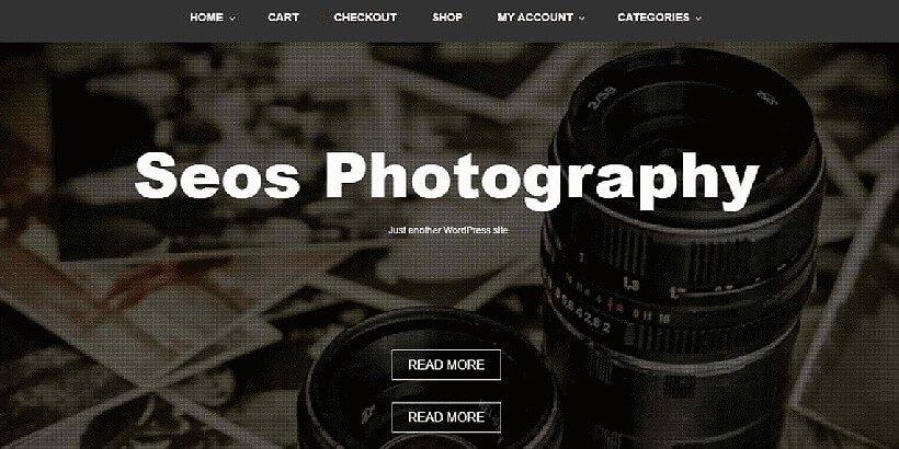 seos free photography wordpress themes
