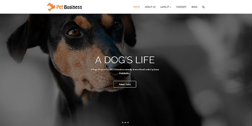 petbusiness free business wordpress themes