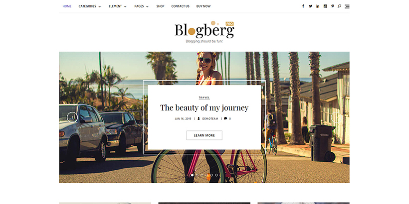 home bolgberg pro wordpress theme
