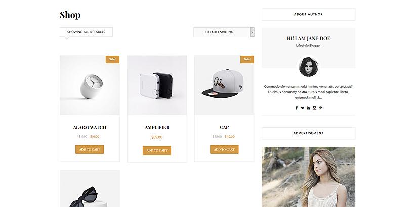 shop contact bolgberg pro wordpress theme