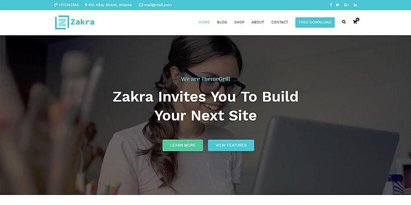 zakra free gutenberg compatible WordPress themes
