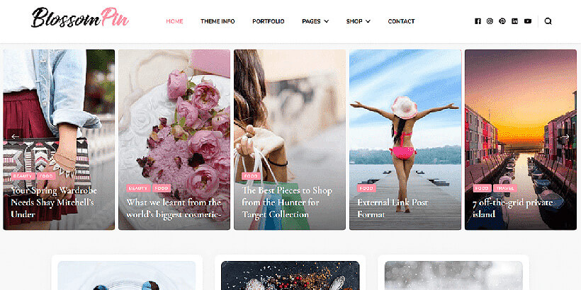 blossompin free lifestyle wordpress themes