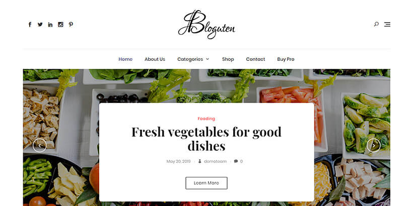 bloguten free lifestyle wordpress themes