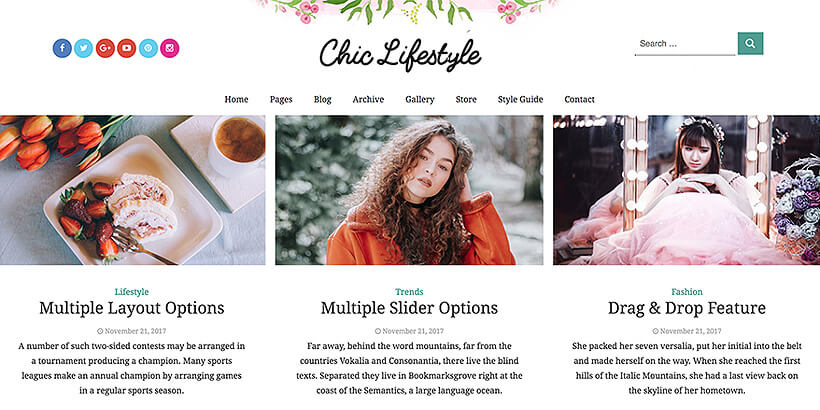 chic free lifestyle wordpress themes