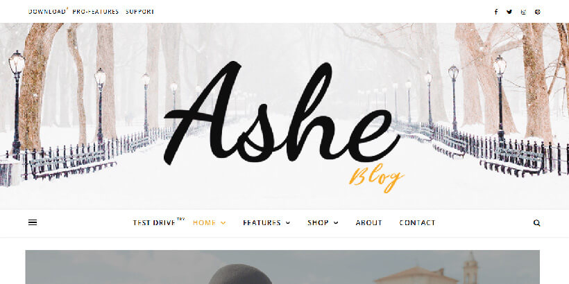ashe most popular wordpress themes