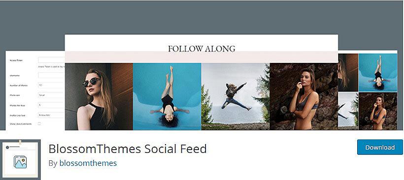 blossomthemes wordpress instagram feeds plugins